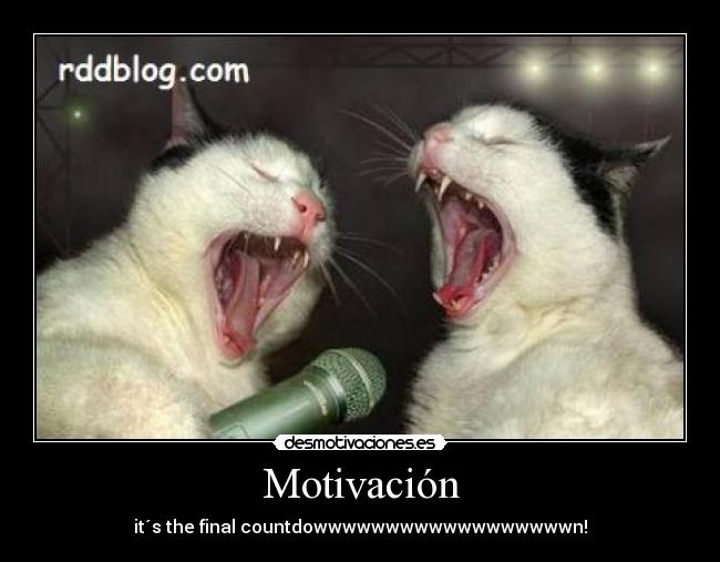Motivación - it´s the final countdowwwwwwwwwwwwwwwwwwn!