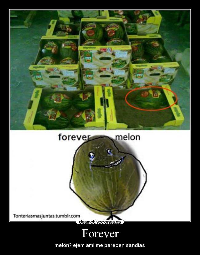 carteles melon forever alone desmotivaciones