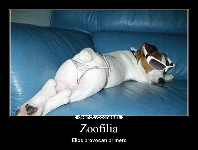 carteles zoofilia perros sexis desmotivaciones