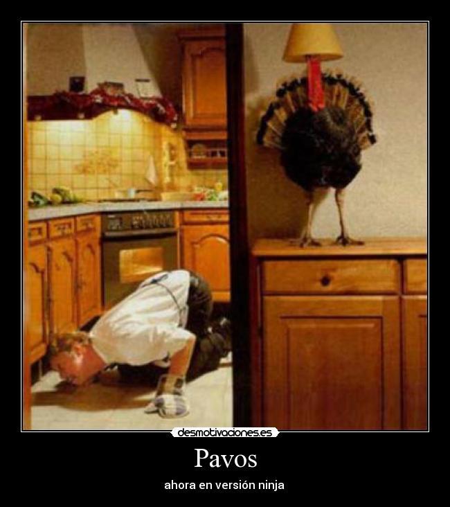Смешно ми е Pavo_2