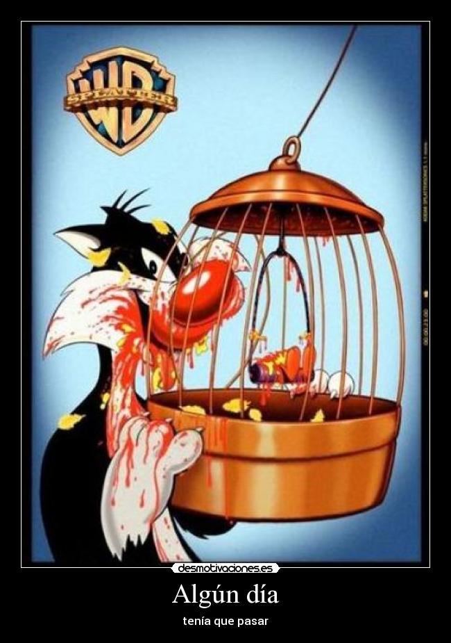 carteles silvestre piolin gato desmotivaciones