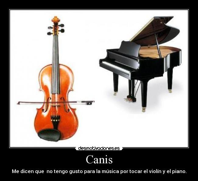 carteles violin piano reggeton canis musica desmotivaciones