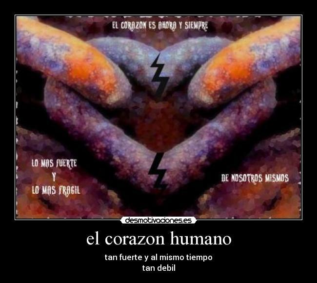 Corazon+humano