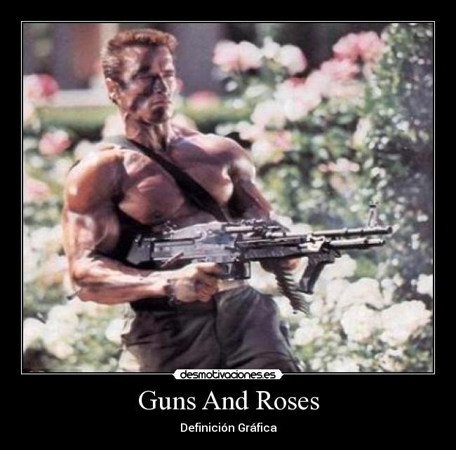 Guns and Roses Desmotivaciones/Motivaciones
