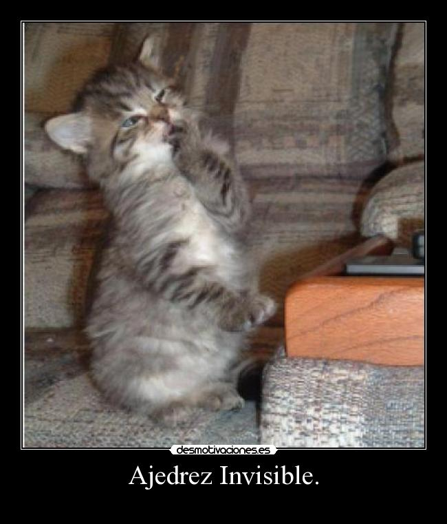 Ajedrez Invisible. -