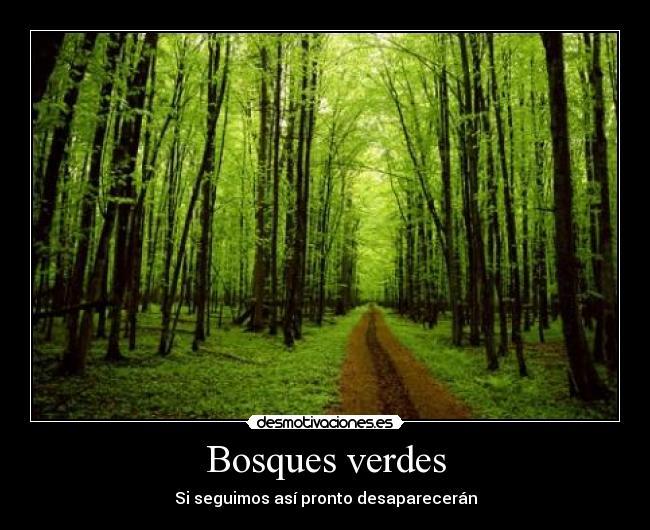 Tetas en el bosque - 4 3