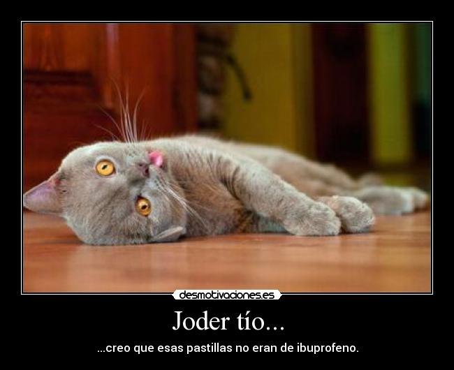 www.desmotivaciones.es