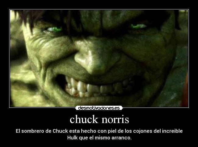 carteles chuck norris desmotivaciones 7dbb1373f6e