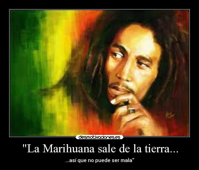 Frases De Bob Marley | Frases Locas