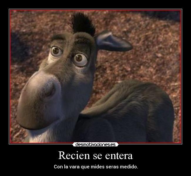 Imagenes de el burro de shrek con frases - Imagui