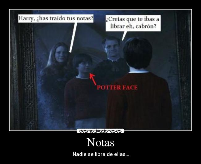 carteles harry potter notas padre madre espejo oesed potter face fantasmas fail desmotivaciones