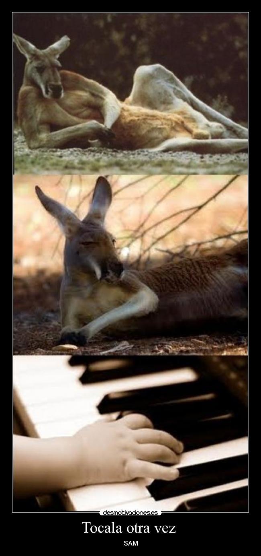 carteles piano desmotivaciones