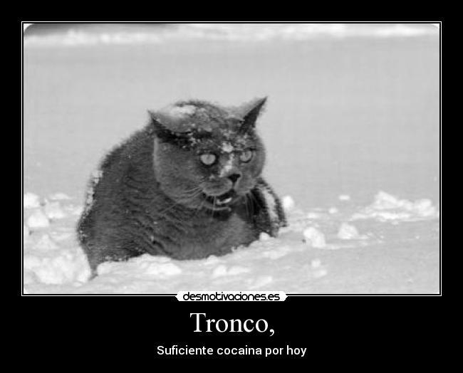 Tronco, - Suficiente cocaina por hoy