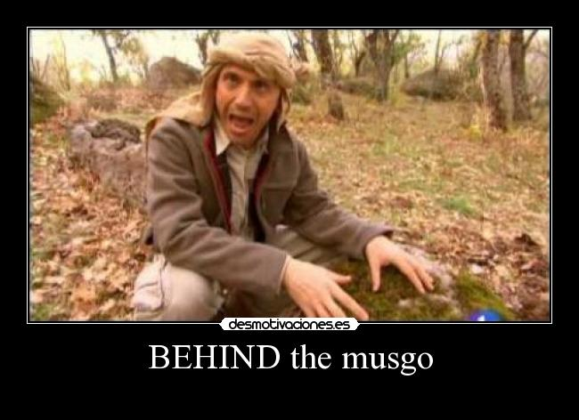 BEHIND the musgo -