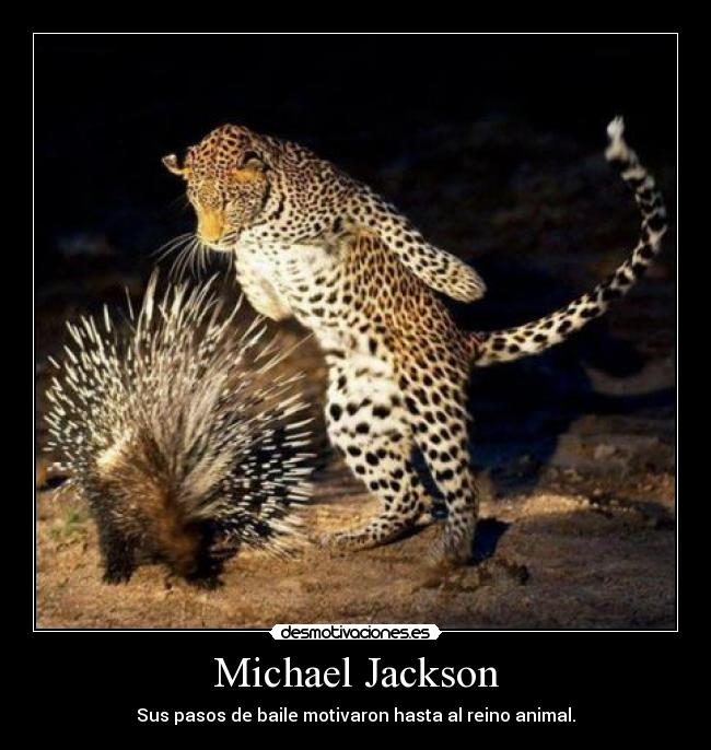 carteles michael jackson reino animal baile zorra implakable desmotivaciones