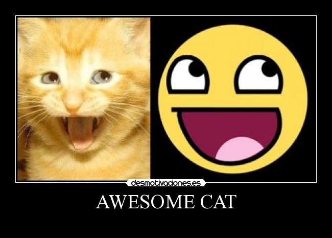 AWESOME CAT -