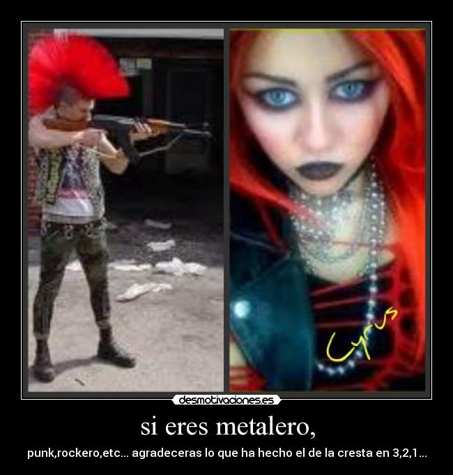 carteles punk rock metalero tockero cresta miley desmotivaciones
