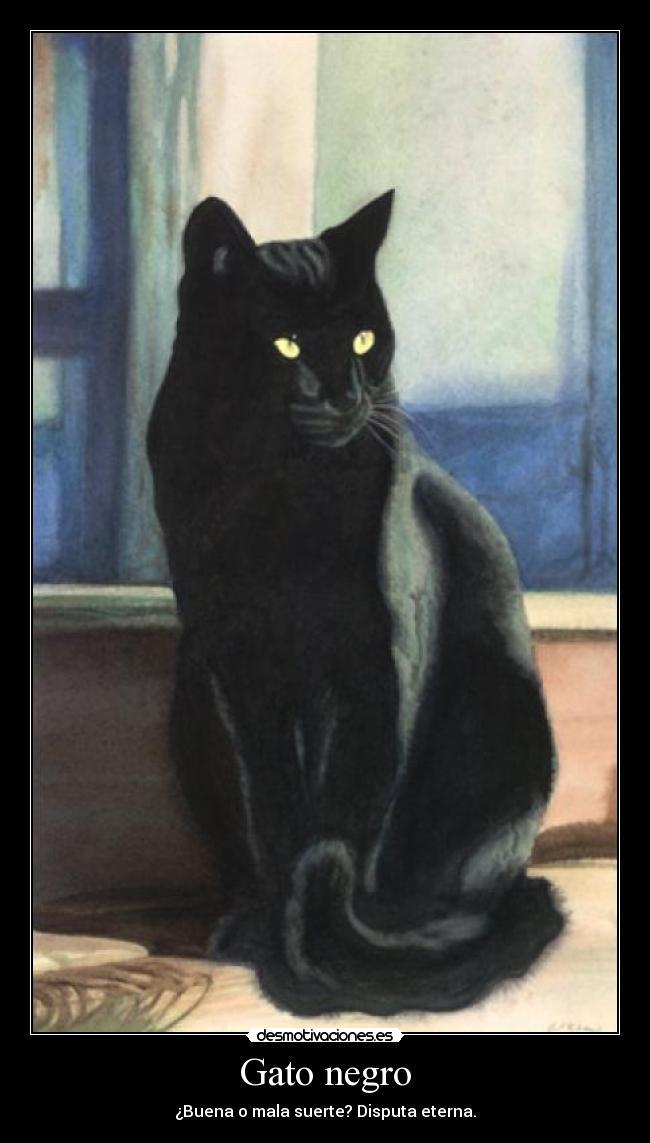 Gato negro desmotivaciones - Los peces traen mala suerte ...
