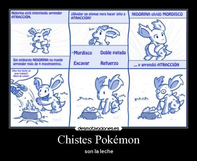 Imaguenes De Votellas De Chistes | apexwallpapers.com