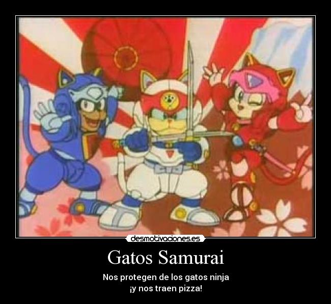 carteles gatos samurai pizza cat gatos samurai gatos ninja desmotivaciones