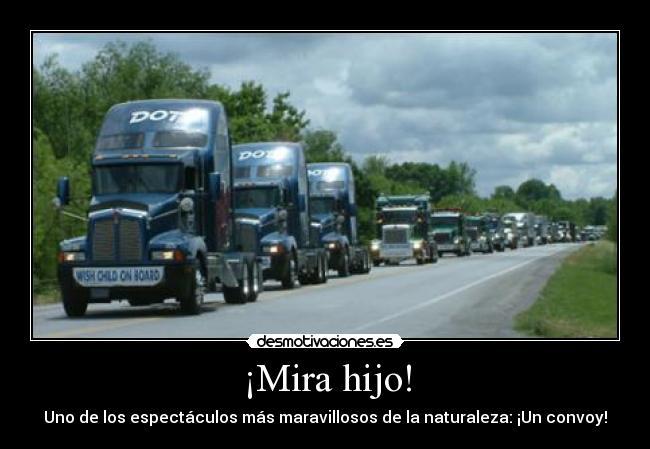 Frases En Autos O Camiones