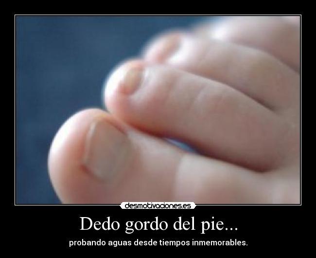 Dedos gordos atados a los pulgares