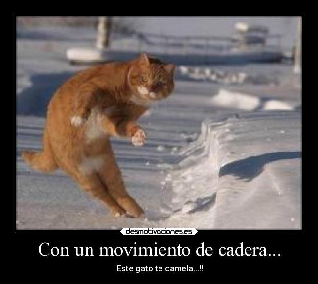Movimientos De Caderas
