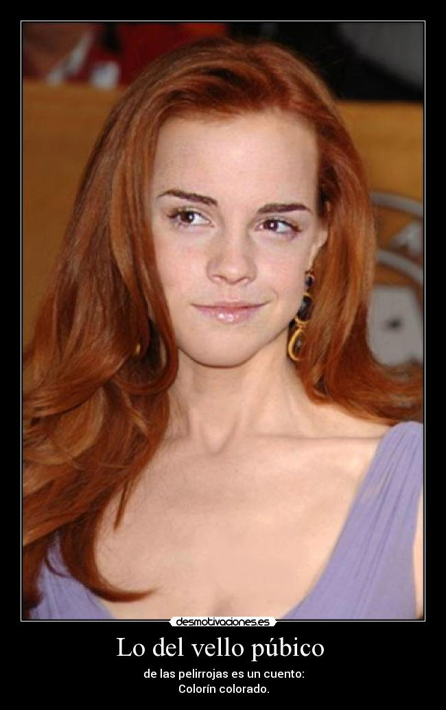 wikimedia pubic hair hairstylegalleriescom