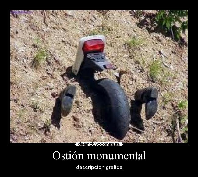 Ostión monumental - descripcion grafica