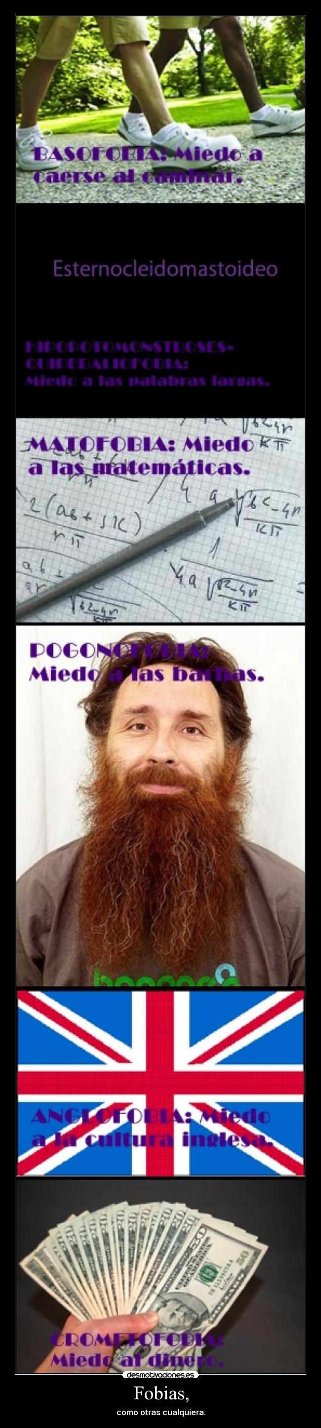 carteles fobias barba dinero caminar caerse ingles matematicas instituto desmotivaciones
