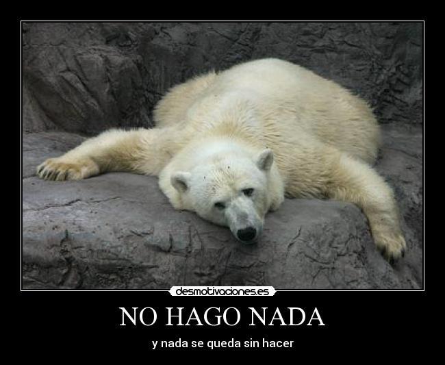 sexo relax oso