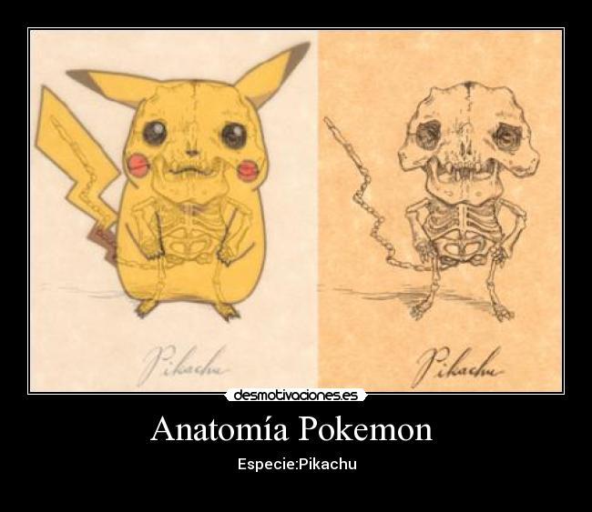 Anatomía Pokemon | Desmotivaciones
