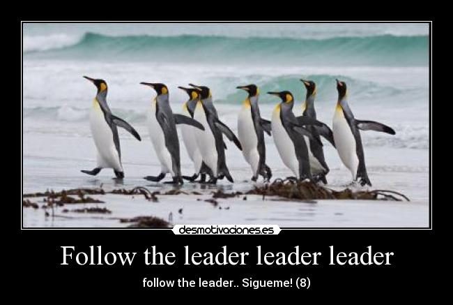 Follow the leader leader leader - follow the leader.. Sigueme! (8)