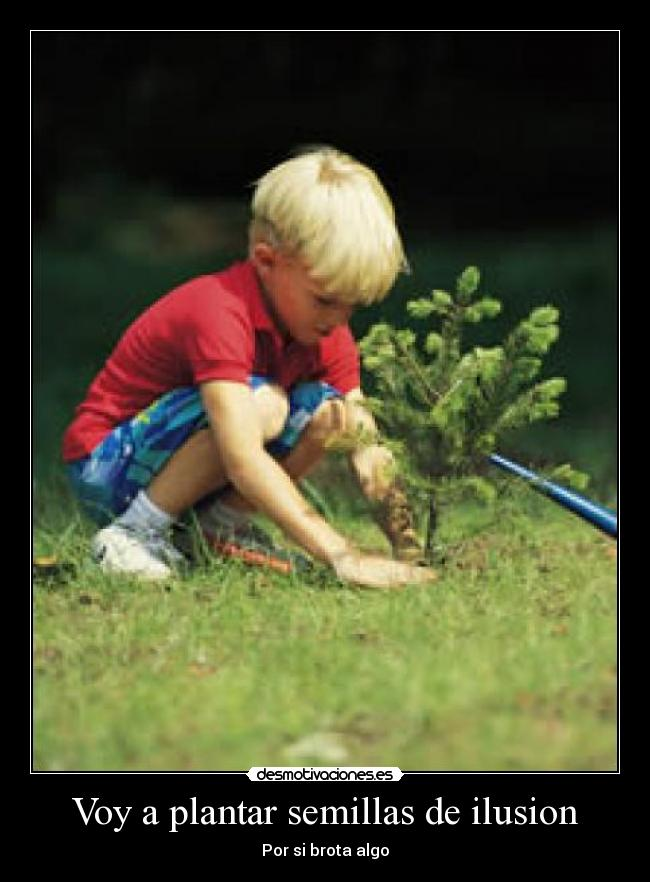 Voy a plantar semillas de ilusion desmotivaciones for Plantar hortensias semillas
