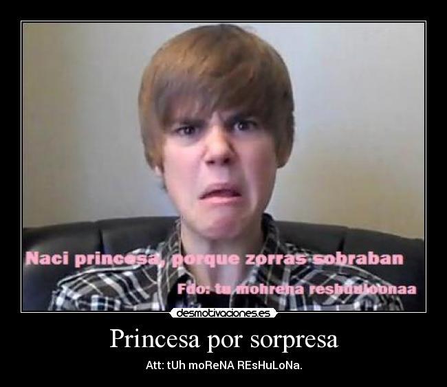 Princesa Por Sorpresa Desmotivaciones