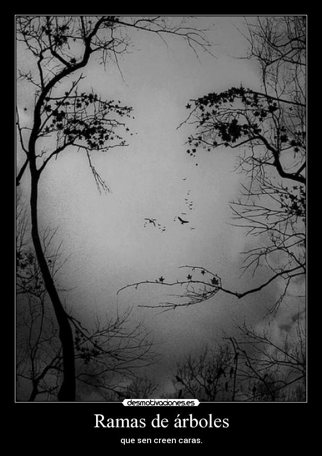 Ramas de árboles | Desmotivaciones