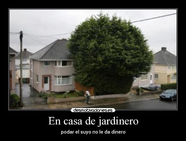 Im genes y carteles de jardinero pag 4 desmotivaciones for Jardinero en casa