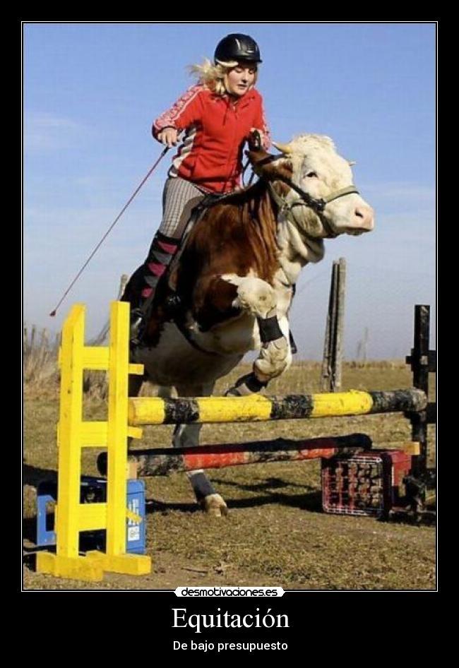 equitación teta