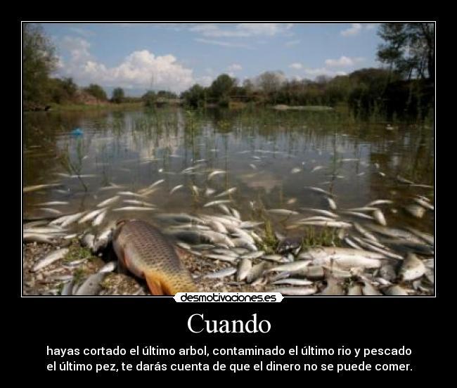 carteles contaminacion peces rios arboles deforestacion clima mundo