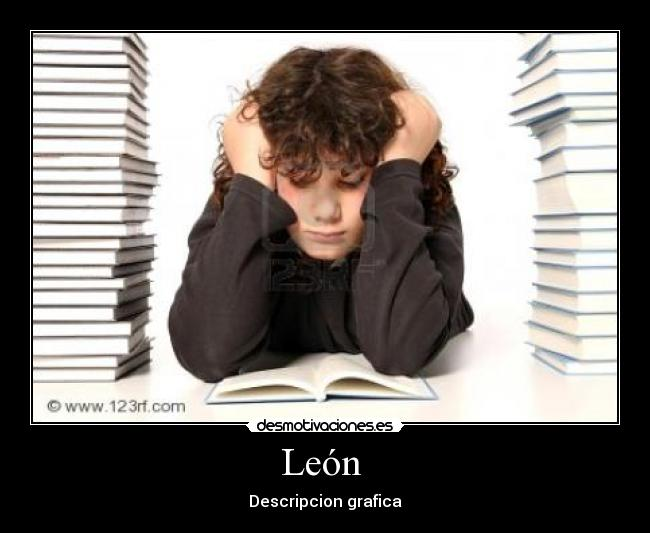León  - Descripcion grafica
