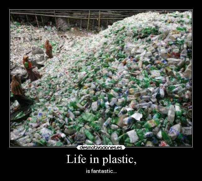 Life in plastic, - is fantastic...