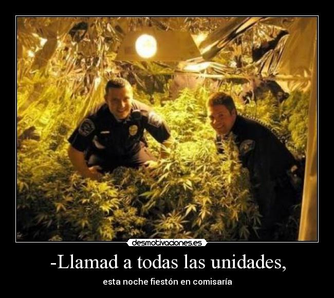 carteles walt_k comisaria policia marihuana fieston desmotivaciones