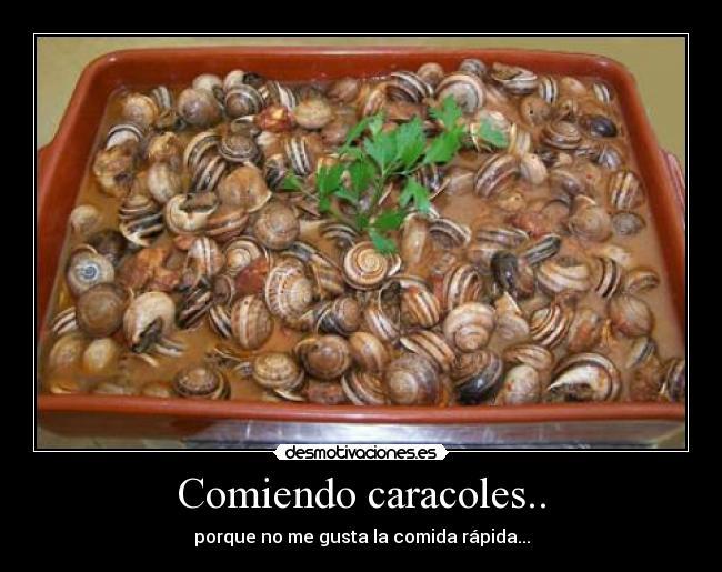 Comiendo caracoles desmotivaciones for Caracol de jardin alimentacion