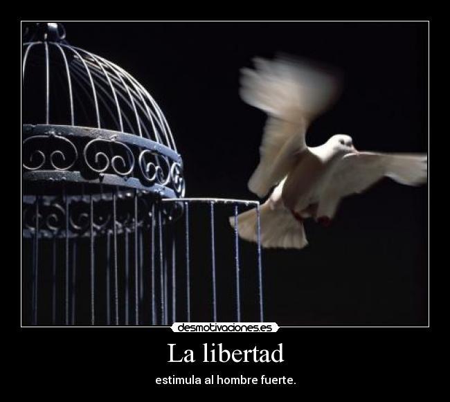 libertad humana platon: