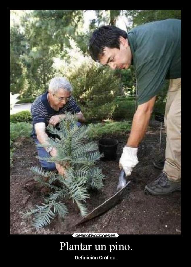 Im genes y carteles de pino pag 25 desmotivaciones for Jardinero definicion