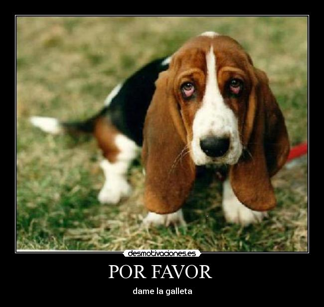 POR FAVOR  - dame la galleta