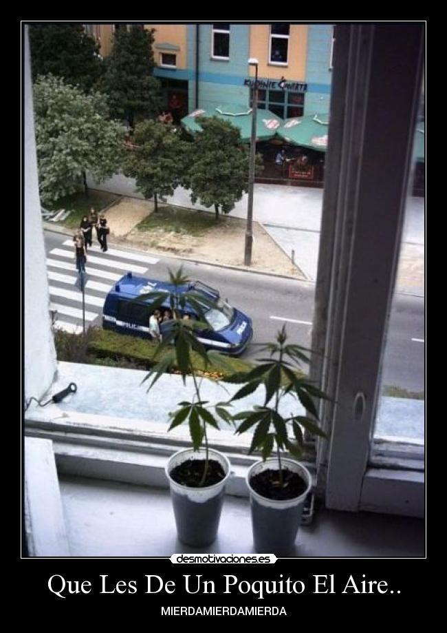 carteles mierda policia marihuana desmotivaciones