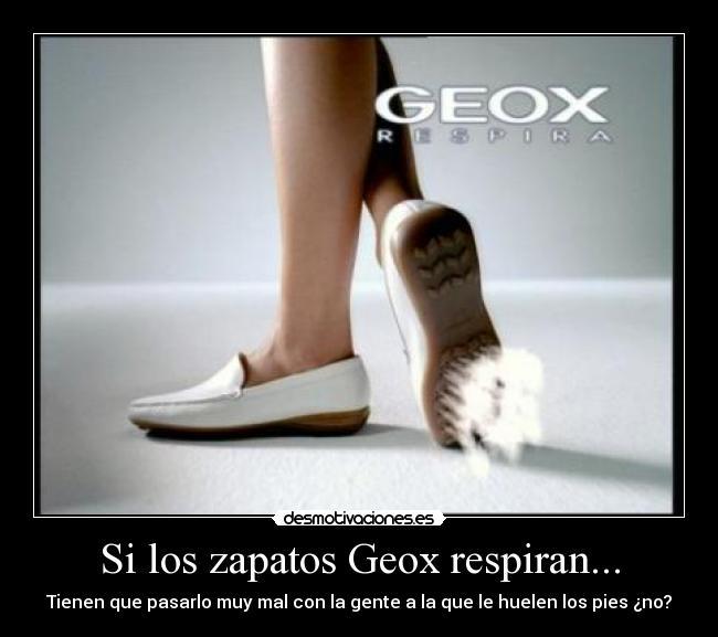 Geox RespiranDesmotivaciones Zapatos Si RespiranDesmotivaciones Los Zapatos Si Los Zapatos Geox Si Los NOnmv8w0