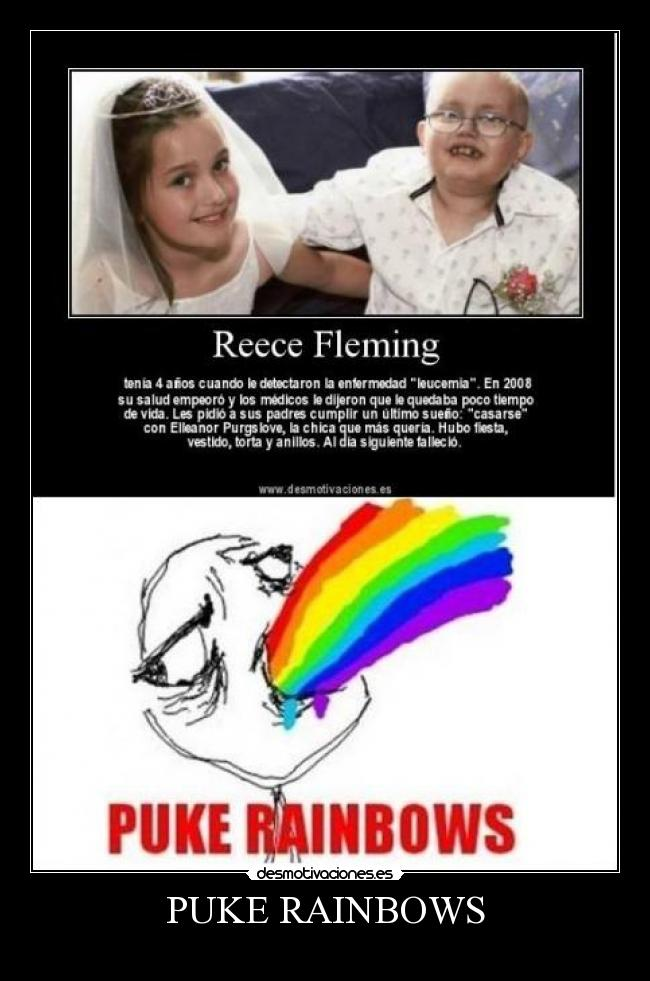 PUKE RAINBOWS -
