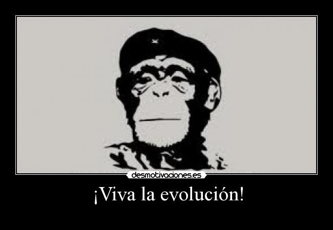 Viva la Evolucion Wallpaper ¡viva la Evolución